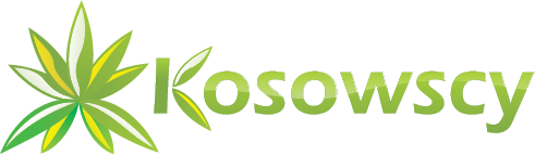 Kosowscy SGRO  - Taxus x media Hicksii